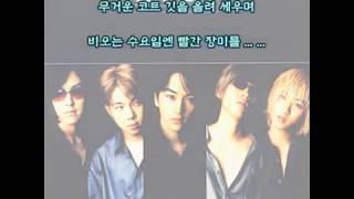 K Pop (케이팝) - 수요일엔 빨간 장미를 (가사)