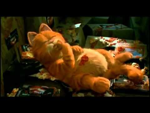 Garfield Der Film Stream