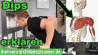 2 Dip Varianten einfach als Fitnesstrainer erklären & richtig ausführen |Dips für Brust oder Trizeps