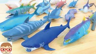 シャーク&co. 伸びる、光る、色が変わる、サメのフィギュア!デアゴスティーニ アンドコシリーズ