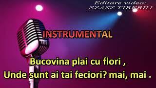 Download Cânta cucu bată l vina,versuri originale, karaoke