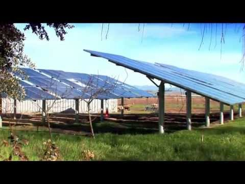 Boviet Solar USA Introduction