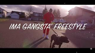 LIL ROCK IMA GANGSTA FREESTYLE OFFICAL MUSIC VIDEO