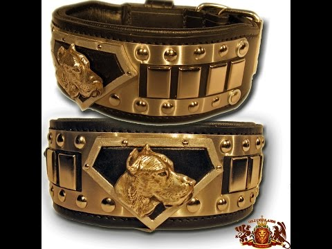 BREED SPECIFIC DOG COLLARS