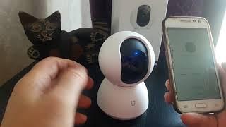 подключение обнавленной камеры Xiaomi mijia 1080..360
