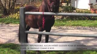 Equipements Equestre
