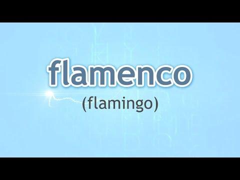 How to Pronounce Flamingo (Flamenco) in Spanish