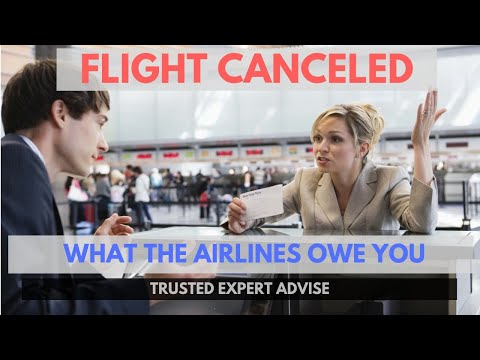 FLIGHT CANCELED! These are your rights for compensation