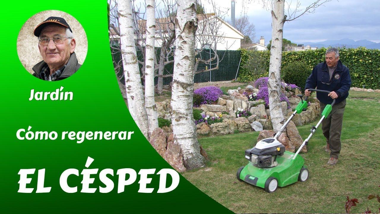 C mo regenerar el c sped youtube - Como plantar cesped en el jardin ...