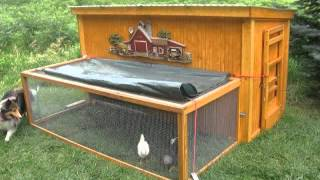 How To Build A Chicken Coop At Home + How To Build A Chicken Coop Book