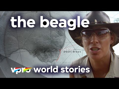 Survival in Australia - The Beagle