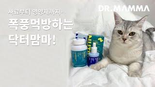 기호성 좋은 사료부터 영양제까지! 강아지, 고양이가 너…
