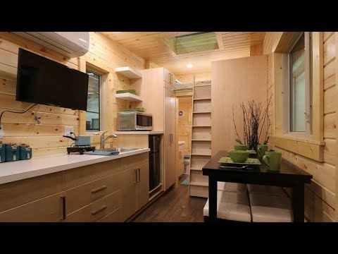 dragonfly-tiny-house-with-sliding-stair-to-acsess-the-loft-bedroom