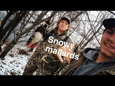 Duck hunting 2017 Arkansas first snow