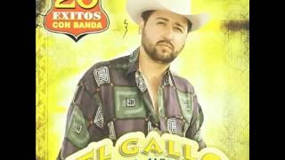 Catarino Y Los Rurales - El Gallo De La Sierra