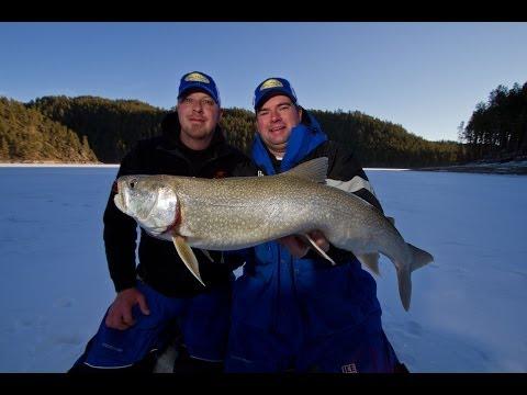 Ice Fishing Lake Trout Black Hills