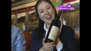 Napa Valley Winery #2 / アメリカ漫遊紀行 ナパバレーの旅
