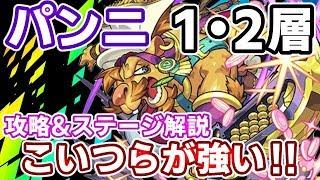 【神獣の聖域:パンニ1・2層】こいつがいれば勝てる!立ち回りの攻略&解説!【モ…