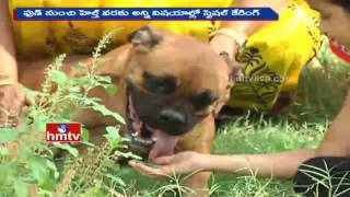 Special Caring for Pets | Launches Pet Boarding Centres in Hyderabad | HMTV
