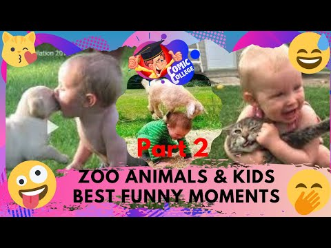 FUNNIEST ZOO ANIMALS & KIDS BEST FUNNY MOMENTS TRY NOT TO LAUGH COMPILATION Part 2