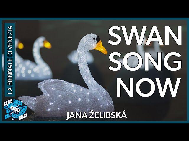 Czech Republic & Slovakia - Jana Želibská - Swan Song Now - Venice Biennale 2017