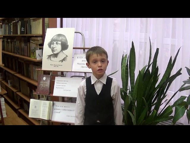 Изображение предпросмотра прочтения – ВладимирПолтавский читает произведение «В сонном царстве» М.И.Цветаевой