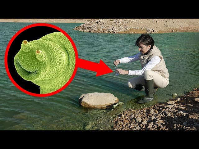 STRANGEST Geological Occurrences Ever Discovered!