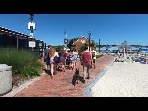 "Australian Kelpie ""Ripley""   AMAZING Transformation!   Dog Trainers of Hampton Roads"