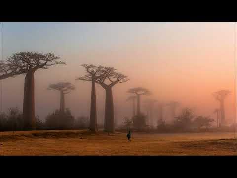 Resaka maraindray (Audio) // D'Gary