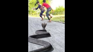 Nagin snake vfx magic video | Cobra vfx video | By ME TV BD
