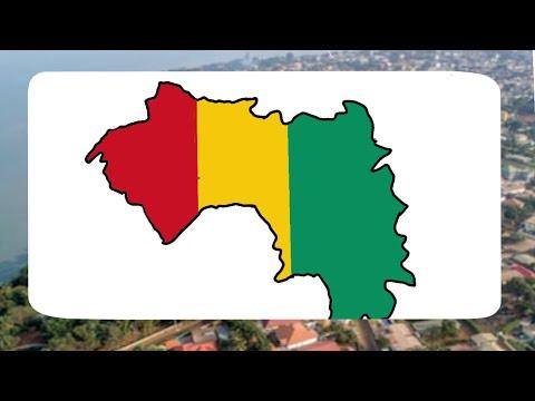 Guinea art flag map 1#