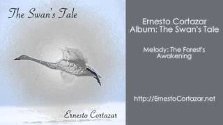 Video The Forest's Awakening - Ernesto Cortazar download MP3, 3GP, MP4, WEBM, AVI, FLV Juli 2018