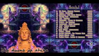 05.  BAR: Trinetra - VA - Doors of Shiva - Psychedelic