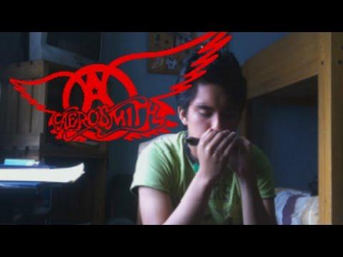 Pink Harmonica Solo  Aerosmith