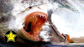Top 10 Animales Que Te Alegrarás De Que Estén Extintos thumbnail