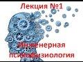 Инженерная психофизиология. Введение