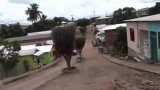 Raly em Marechal Thaumaturgo