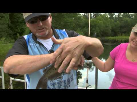 Urban Catfish - CookIN' Gone Wild Field To Table S2 E5 | Indiana DNR