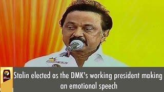 LIVE: MK Stalin's Emotional Full Speech as DMK's Working President
