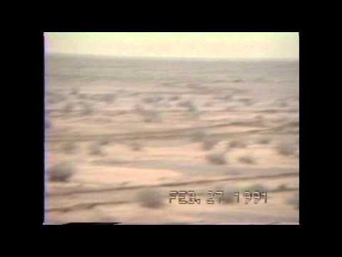 A10 Warthogs - Operation Desert Storm