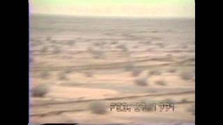 A10 Warthogs - Operation Desert Storm