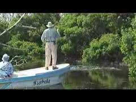 Tarpon Cay Lodge by Gary and Jason Borger - Yucatan Tarpon