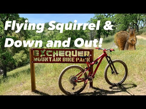 Exchequer Mountain Bike Park: Trails Flying Squirrel & Down And Out! Practice Run & Broken Chainring