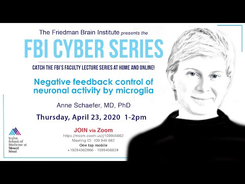 FBI Cyber Series - Negative feedback control of neuronal activity by microglia by Dr. Anne Schaefer