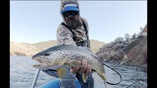 FLY FISHING AND SPAWNING TROUT