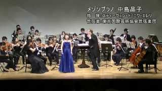 ヌーベルバーグ2015 Part.1&2 ヴァイオリン協奏曲・チェロ協奏曲・アリア(抜粋)