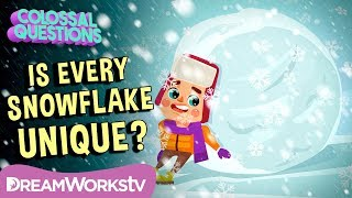 Is Every Snowflake Unique? | COLOSSAL QUESTIONS