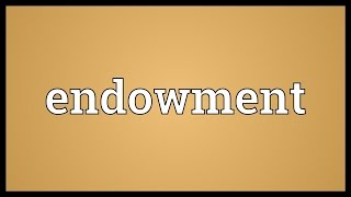 Endowment Meaning