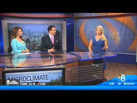 KFMB CBS News8 Morning/Midday open