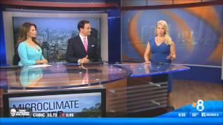 KFMB CBS News8 Morning/Midday open